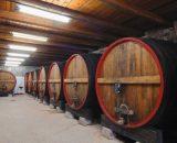 Vinoplod winery vinarija | Babić Vinoplod Šibenik 0,75 l | Dostava vina i ostalih proizvoda u marine direktno na vaše plovilo!